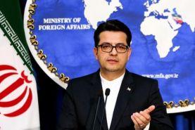 موسوی : شروع کمک به ایرانیان مناطق آلوده در چین