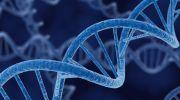 بازگرداندن بینایی با فناوری جدید ژن درمانی میسر می شود