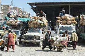 ابتکار پاکستان برای کاهش سطح بیکاری ها