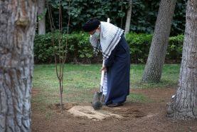 کاشت دو نهال به دست رهبری در روز درخت کاری