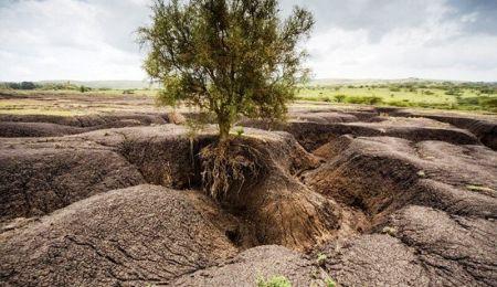 محیط زیست ایران آخرین نفس هایش را می کشد