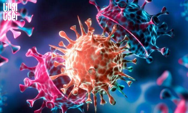 سویه دلتا از طریق افراد واکسینه شده احتمال انتقال بیشتری دارد