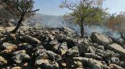 مهار آتش سوزی در حاشیه تالاب نئور اردبیل