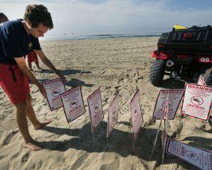 سواحل کالیفرنیا در معرض نشت نفت