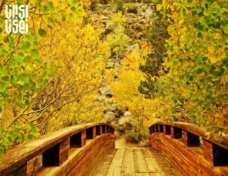 زیبایی پاییز در سراسر جهان